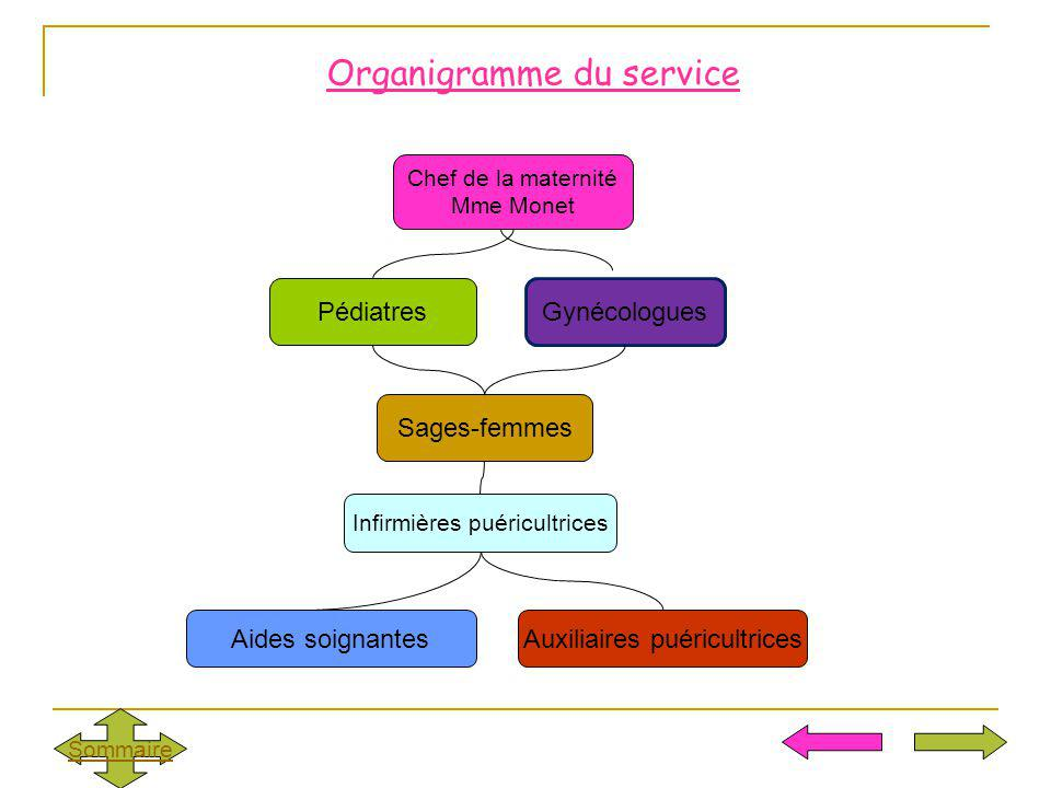 Organigramme du service Chef de la maternité Mme Monet Pédiatres Sages-femmes Infirmières puéricultrices Auxiliaires puéricultrices Sommaire Gynécolog