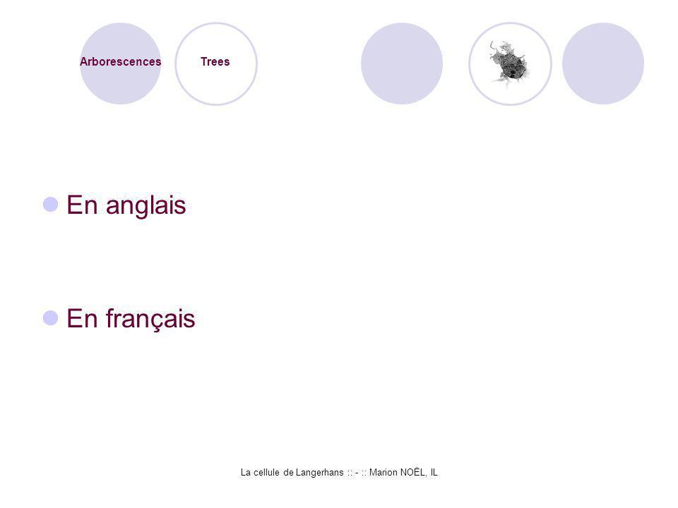 La cellule de Langerhans :: - :: Marion NOËL, IL En anglais En français Arborescences Trees