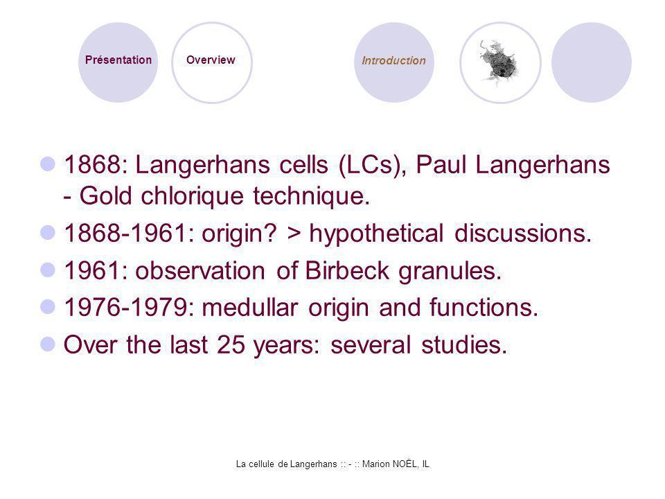 La cellule de Langerhans :: - :: Marion NOËL, IL 1868: Langerhans cells (LCs), Paul Langerhans - Gold chlorique technique. 1868-1961: origin? > hypoth