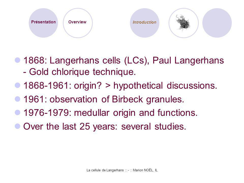 La cellule de Langerhans :: - :: Marion NOËL, IL The LC is: an epithelial component, derived from a macrophage precursor in the bone marrow (CD34 molecules).