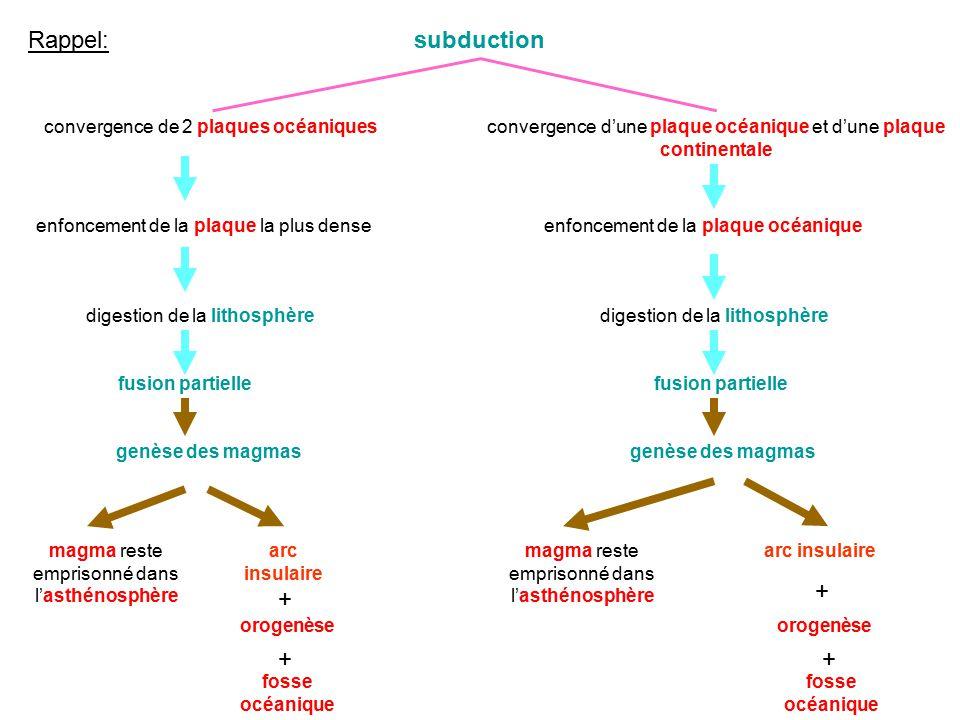 subduction convergence de 2 plaques océaniquesconvergence dune plaque océanique et dune plaque continentale enfoncement de la plaque la plus dense dig