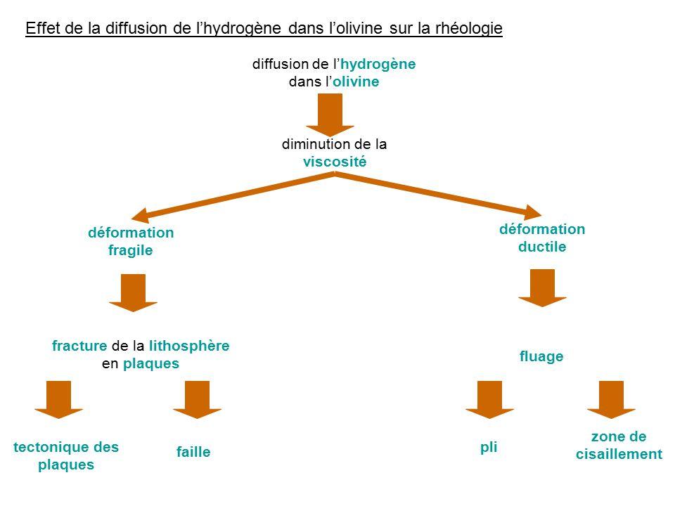 Effet de la diffusion de lhydrogène dans lolivine sur la rhéologie diffusion de lhydrogène dans lolivine diminution de la viscosité déformation ductil
