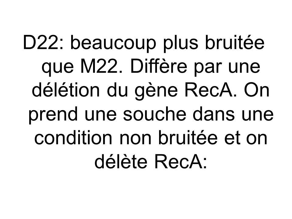 D22: beaucoup plus bruitée que M22.Diffère par une délétion du gène RecA.