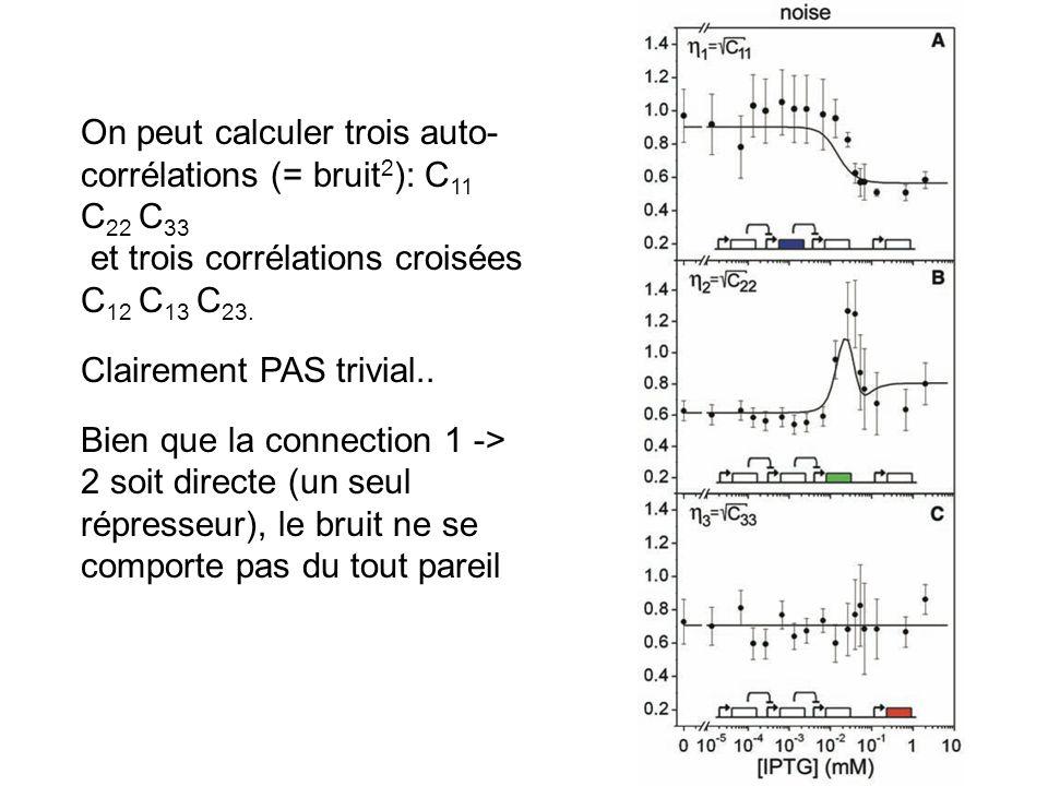 On peut calculer trois auto- corrélations (= bruit 2 ): C 11 C 22 C 33 et trois corrélations croisées C 12 C 13 C 23.