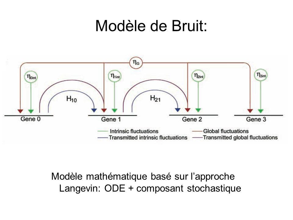 Modèle de Bruit: Modèle mathématique basé sur lapproche Langevin: ODE + composant stochastique