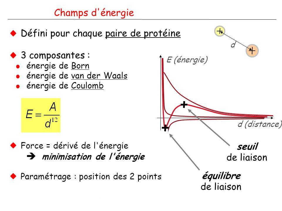 A. Coulon - Modélisation de corps nucléaires - IPG - 29/11/2006 Champs d'énergie Défini pour chaque paire de protéine 3 composantes : énergie de Born