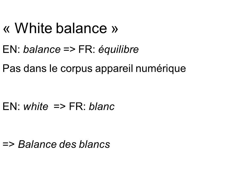 Traduction spécialisée called White Balance (WB, for short), which simply means the camera tries to keep white objects fairly white, White balance: function that allows you to have natural colors by adapting the whites to the light.