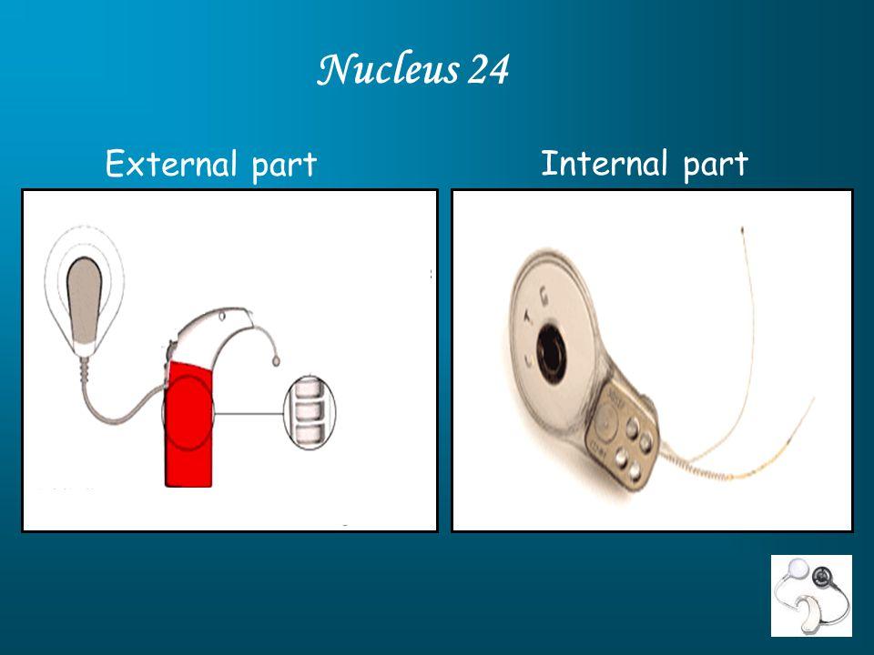 External part Internal part Nucleus 24