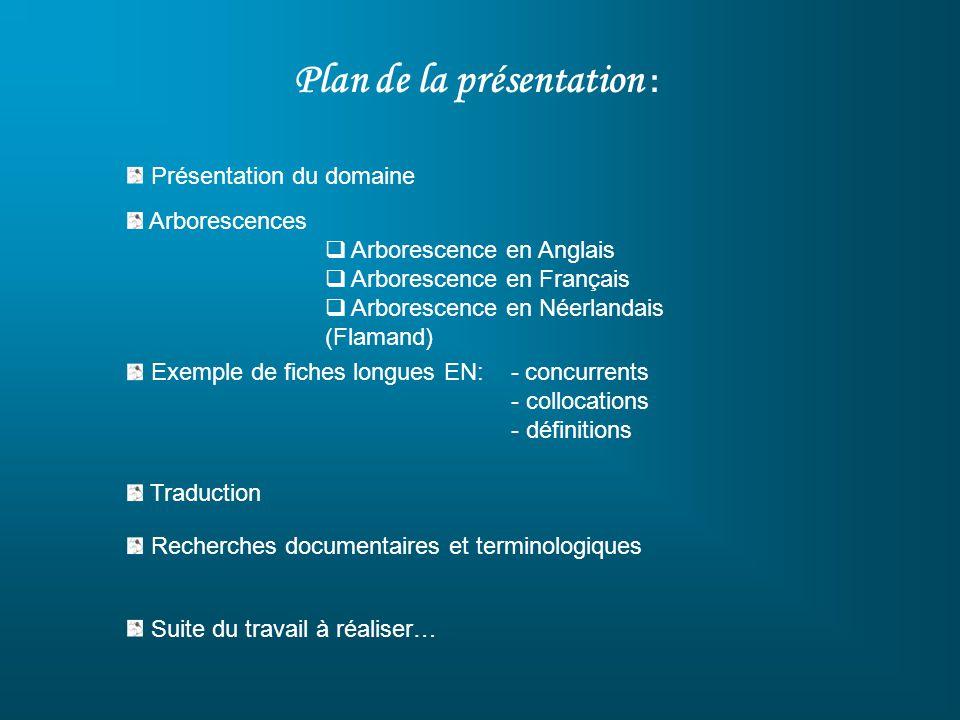 Plan de la présentation : Présentation du domaine Arborescences Arborescence en Anglais Arborescence en Français Arborescence en Néerlandais (Flamand)