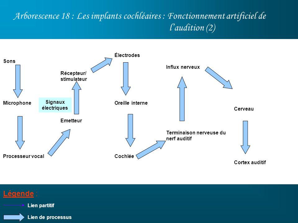 Arborescence 18 : Les implants cochléaires : Fonctionnement artificiel de laudition (2) Légende : Sons Microphone Processeur vocal Lien partitif Cerve
