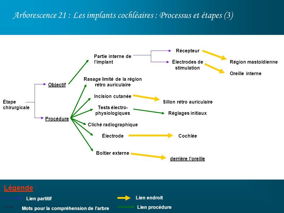 Arborescence 21 : Les implants cochléaires : Processus et étapes (3) Légende : Lien partitif Récepteur Électrodes de stimulation Sillon rétro auricula