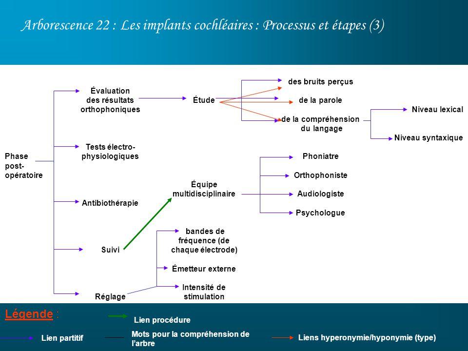 Arborescence 22 : Les implants cochléaires : Processus et étapes (3) Légende : Lien partitif des bruits perçus de la parole de la compréhension du lan