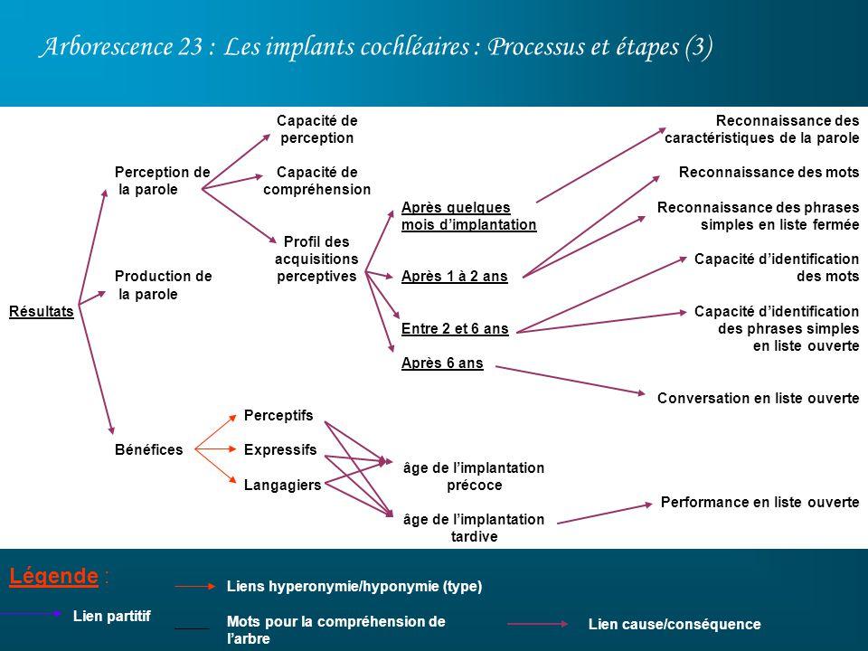 Arborescence 23 : Les implants cochléaires : Processus et étapes (3) Légende : Lien partitif Après quelques mois dimplantation Après 1 à 2 ans Entre 2