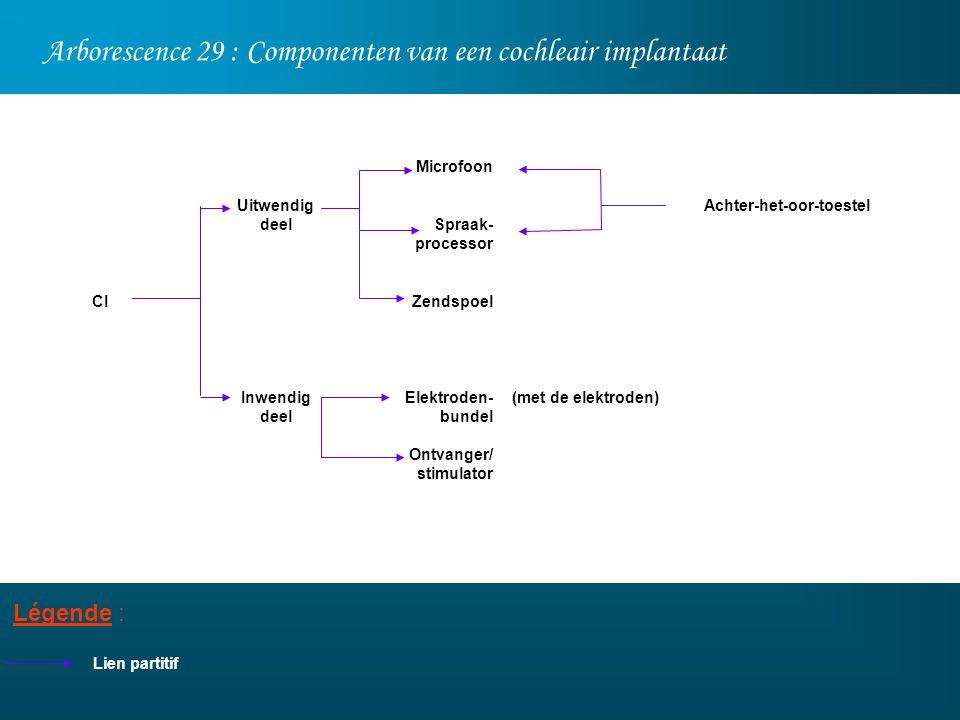 Arborescence 29 : Componenten van een cochleair implantaat Légende : Lien partitif Uitwendig deel Inwendig deel CI Achter-het-oor-toestel (met de elek