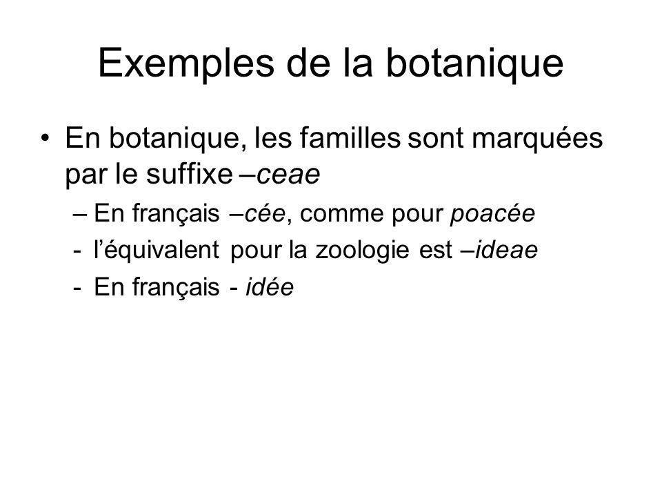 Exemples de la botanique En botanique, les familles sont marquées par le suffixe –ceae –En français –cée, comme pour poacée -léquivalent pour la zoolo