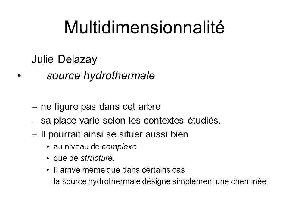 Multidimensionnalité Julie Delazay source hydrothermale –ne figure pas dans cet arbre –sa place varie selon les contextes étudiés. –Il pourrait ainsi