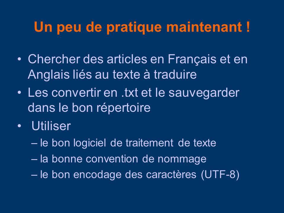 Un peu de pratique maintenant ! Chercher des articles en Français et en Anglais liés au texte à traduire Les convertir en.txt et le sauvegarder dans l