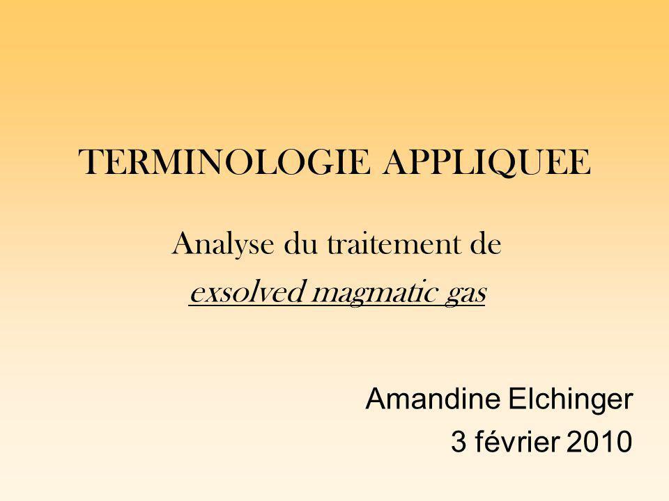 TERMINOLOGIE APPLIQUEE Analyse du traitement de exsolved magmatic gas Amandine Elchinger 3 février 2010