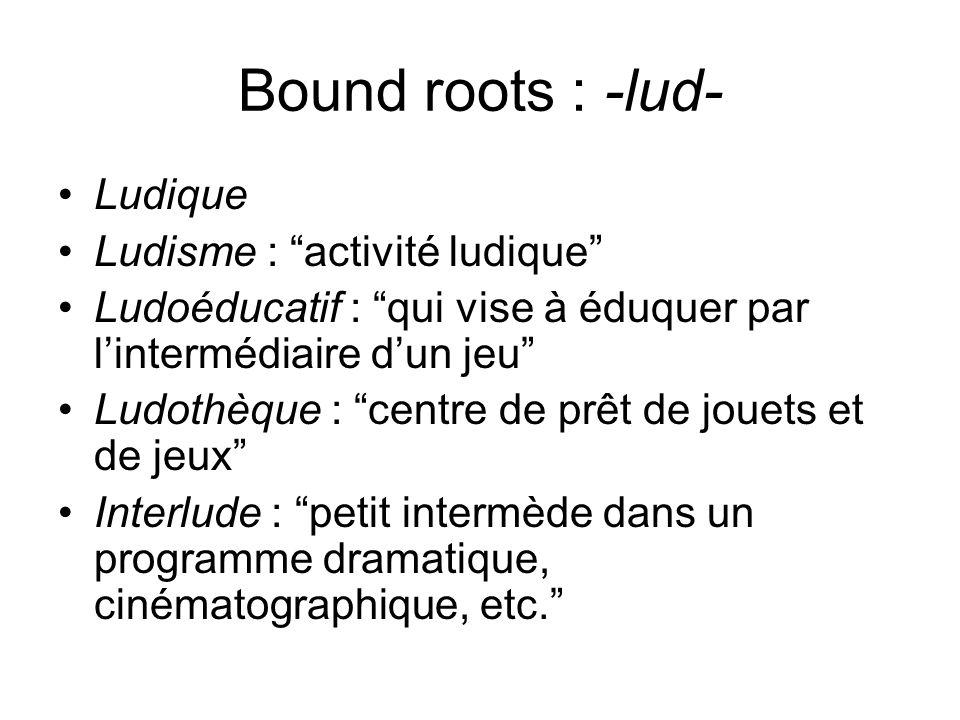 Bound roots : -lud- Ludique Ludisme : activité ludique Ludoéducatif : qui vise à éduquer par lintermédiaire dun jeu Ludothèque : centre de prêt de jou