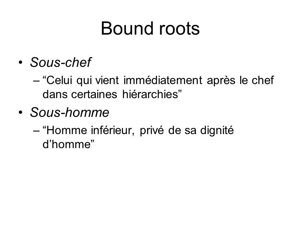 Bound roots Sous-chef –Celui qui vient immédiatement après le chef dans certaines hiérarchies Sous-homme –Homme inférieur, privé de sa dignité dhomme