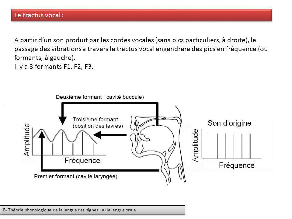 A partir dun son produit par les cordes vocales (sans pics particuliers, à droite), le passage des vibrations à travers le tractus vocal engendrera de