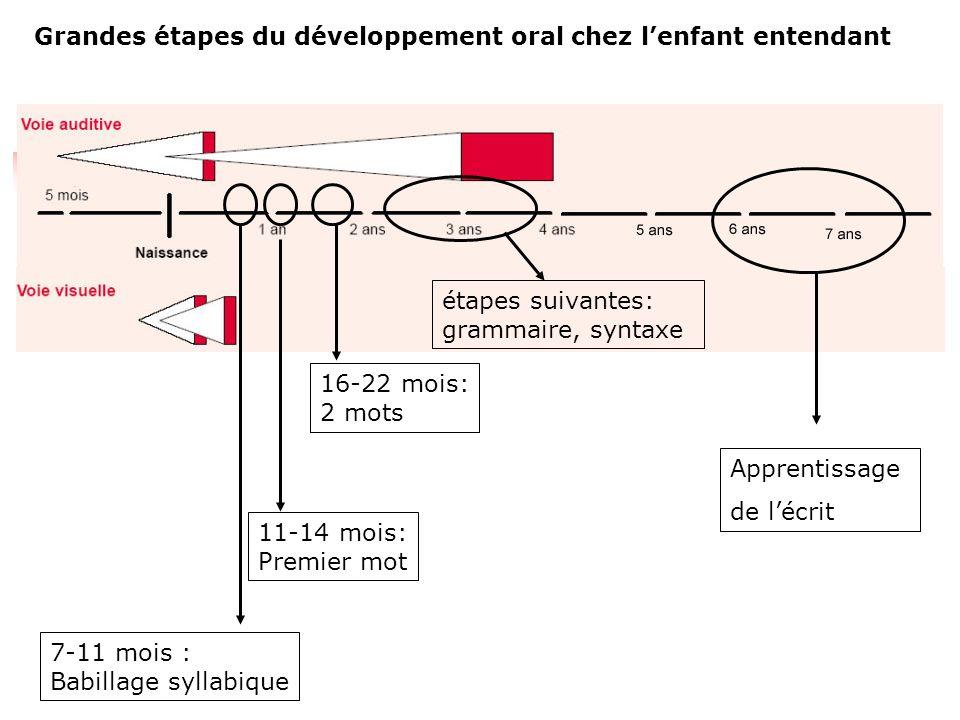 Evoquons la question de la maturation nerveuse : Processus de myélinisation : la gaine de myéline accélère la conduction nerveuse le potentiel d'actio