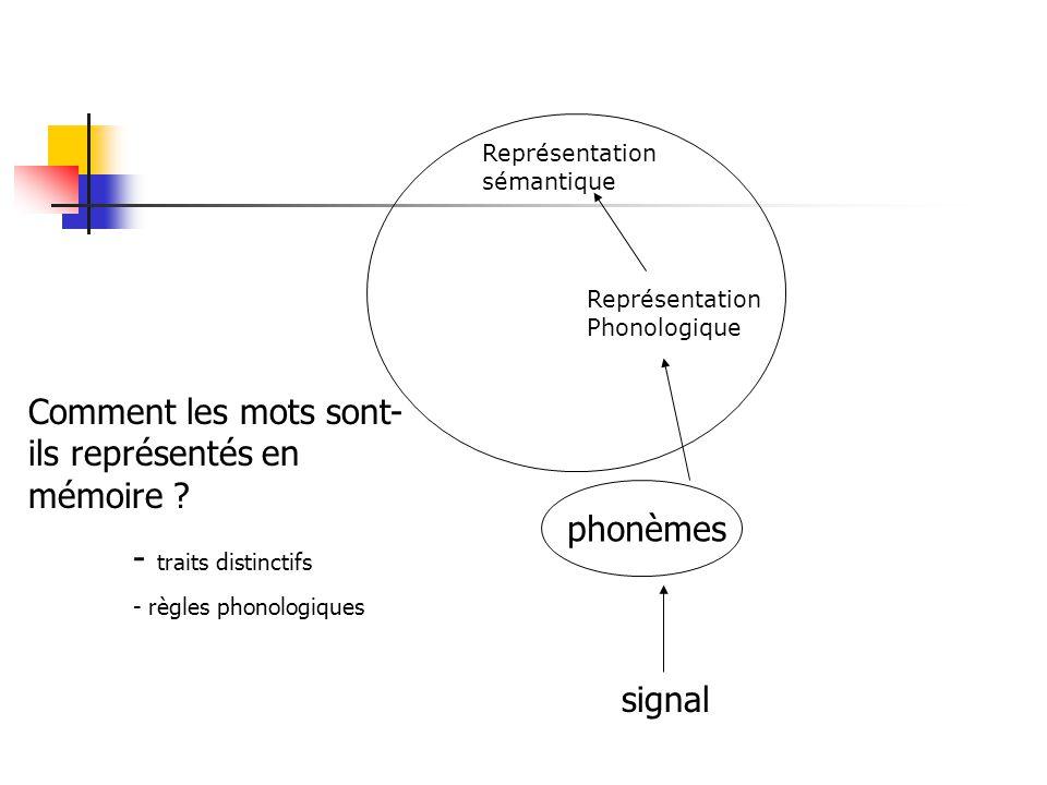 3.2 Langage oral La notion de lexique Représentation sémantique Représentation phonologique Représentation orthographique lectureparole