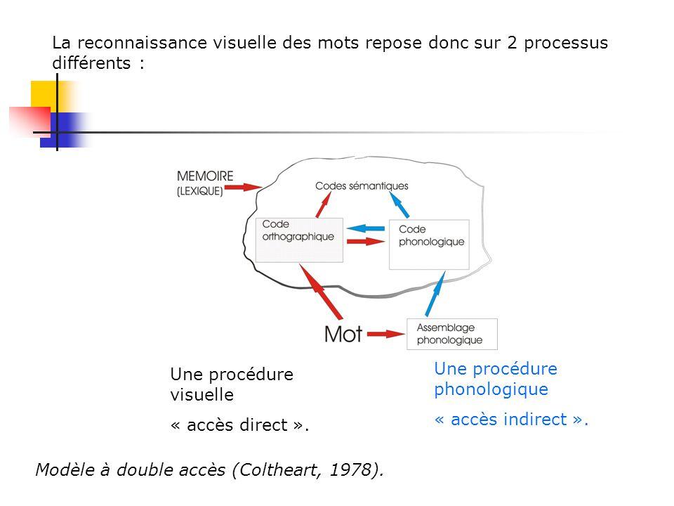 La reconnaissance visuelle des mots repose donc sur 2 processus différents : Une procédure visuelle « accès direct ».