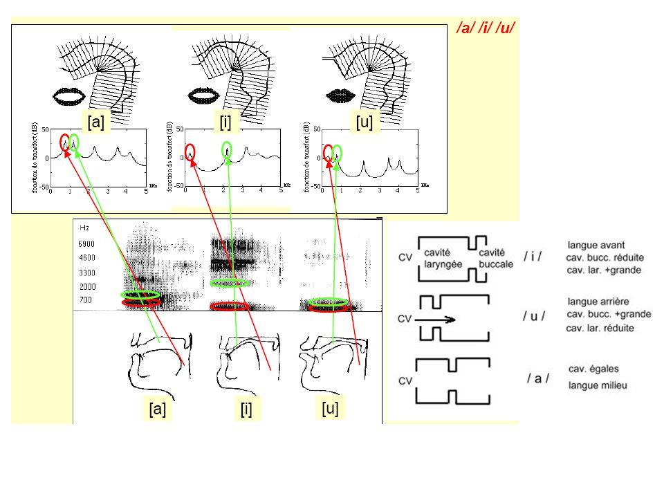 17 i é è Fondamentale Formants Partie bruitée instable, étalée en fréquences => hauteur ambiguë ptk Voyelles : Consonnes :