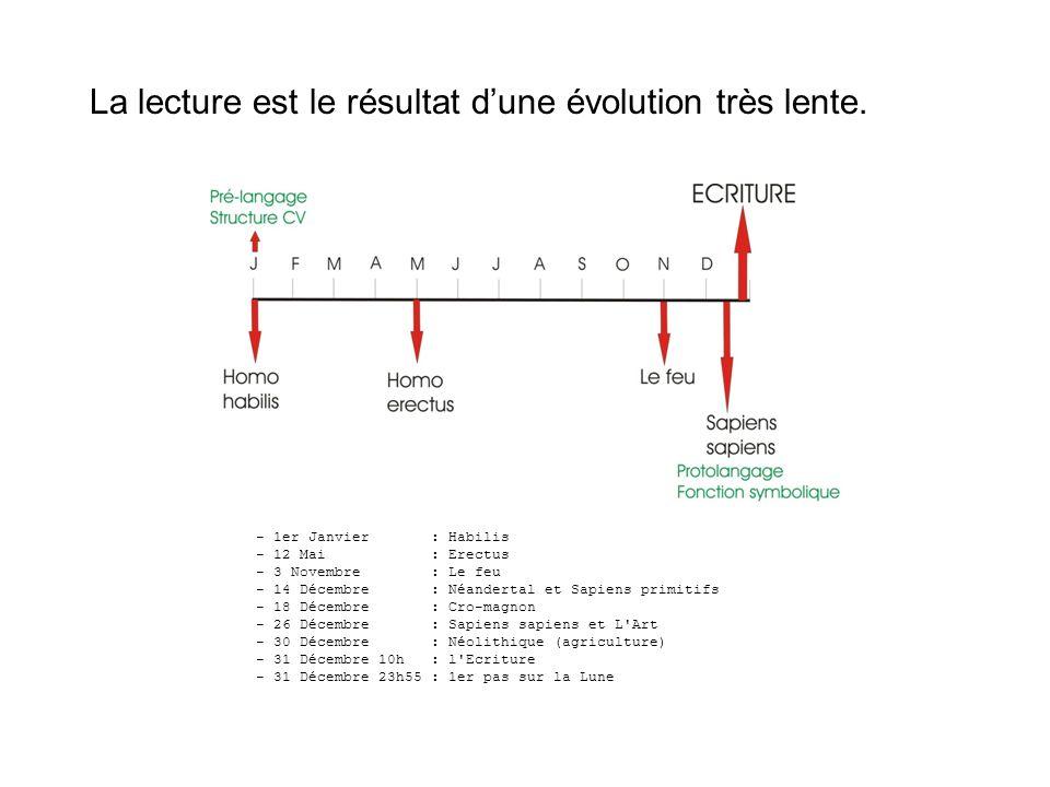 Le langage = 2 modalités Interactions entre ces 2 modalités Létude de lécrit ne peut se faire sans tenir compte de loral.