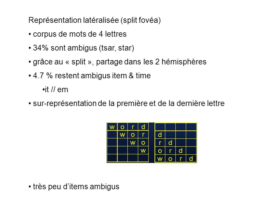 Représentation latéralisée (split fovéa) corpus de mots de 4 lettres 34% sont ambigus (tsar, star) grâce au « split », partage dans les 2 hémisphères
