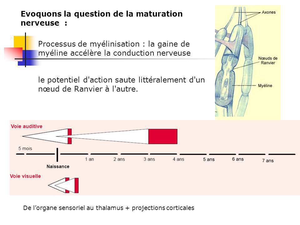 Les personnes sourdes sont plus rapides pour rediriger leur attention dun point à lautre de lespace Supériorité aussi pour détecter les mouvements en