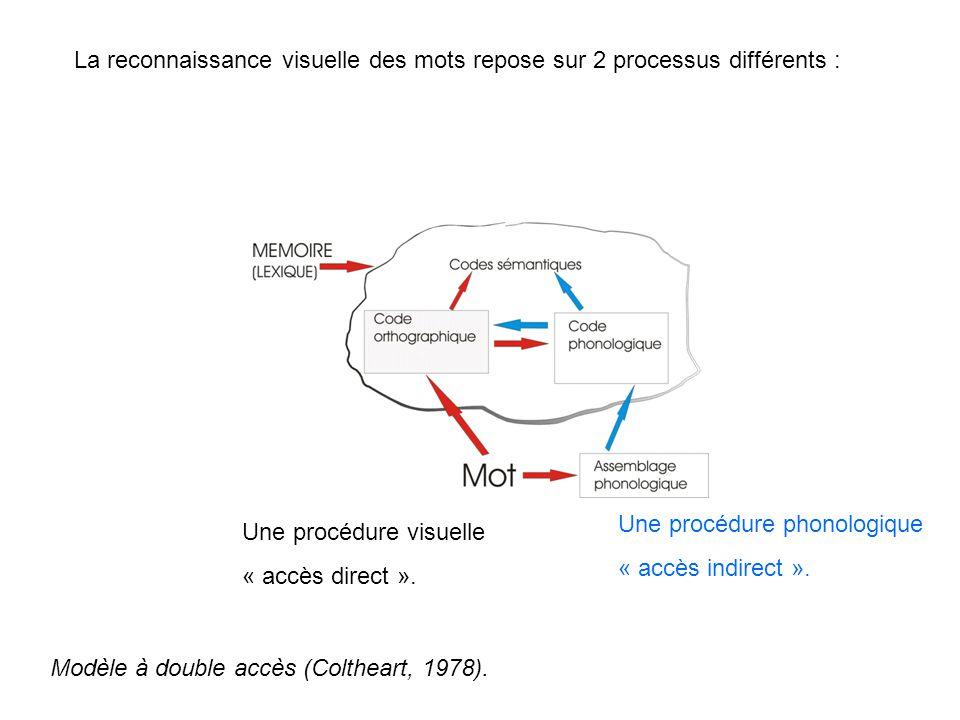 La reconnaissance visuelle des mots repose sur 2 processus différents : Une procédure visuelle « accès direct ». Une procédure phonologique « accès in