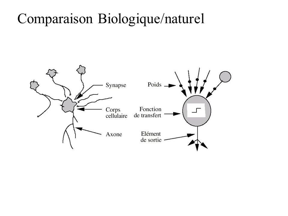 Modèles connexionistes Réseau connexionniste = ensemble dunités Unités ou neurones