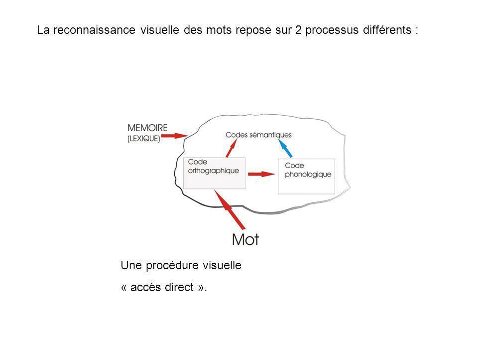 La reconnaissance visuelle des mots repose sur 2 processus différents : Une procédure visuelle « accès direct ».