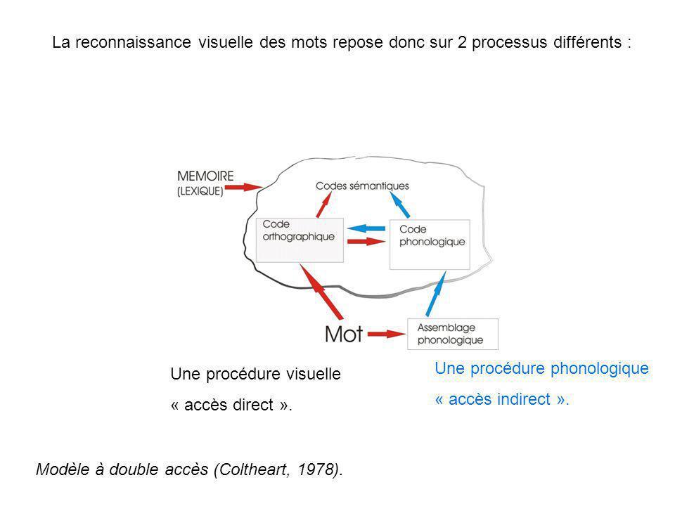 La reconnaissance visuelle des mots repose donc sur 2 processus différents : Une procédure visuelle « accès direct ». Une procédure phonologique « acc