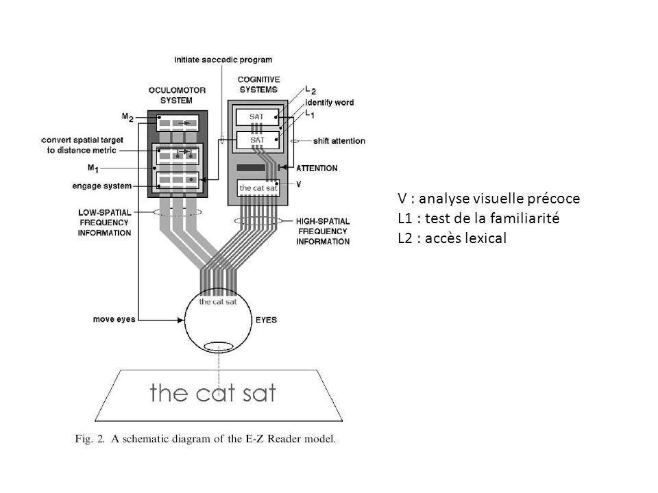 V : analyse visuelle précoce L1 : test de la familiarité L2 : accès lexical