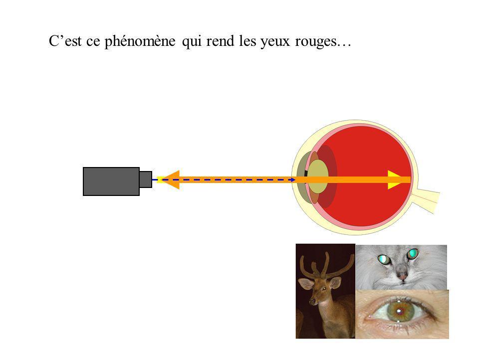 Cest ce phénomène qui rend les yeux rouges…