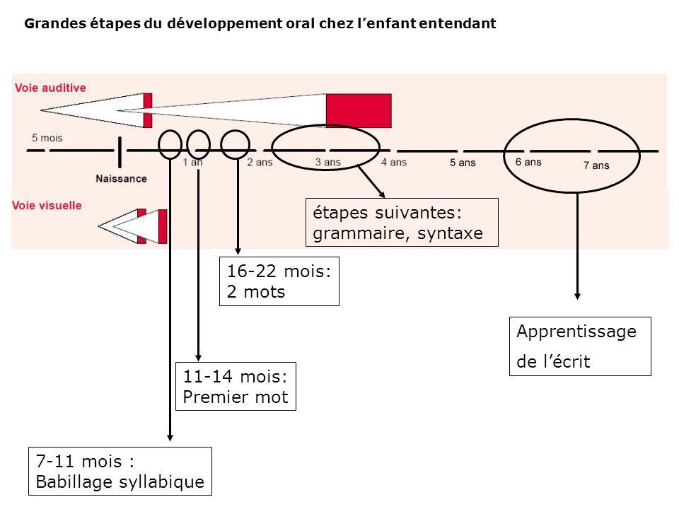 Processus de myélinisation : la gaine de myéline accélère la conduction nerveuse le potentiel d'action saute littéralement d'un nœud de Ranvier à l'au