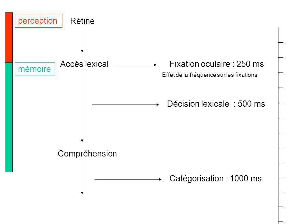 Rétine Accès lexical Compréhension perception mémoire Décision lexicale : 500 ms Catégorisation : 1000 ms Fixation oculaire : 250 ms Effet de la fréquence sur les fixations
