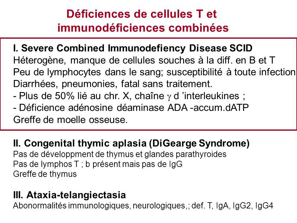 Déficiences de cellules T et immunodéficiences combinées I. Severe Combined Immunodefiency Disease SCID Héterogène, manque de cellules souches à la di