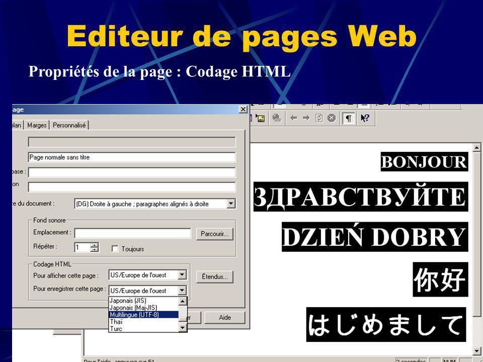 Propriétés de la page : Codage HTML