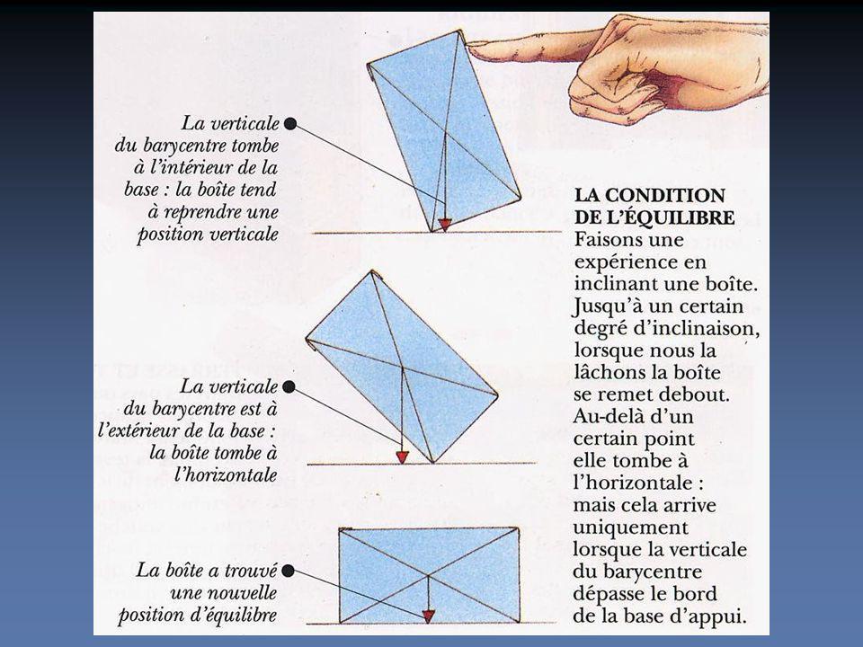 Les éléments dune structure travaillent de manière directe ou indirecte à de la traction et / ou de la compression Sollicitations des éléments