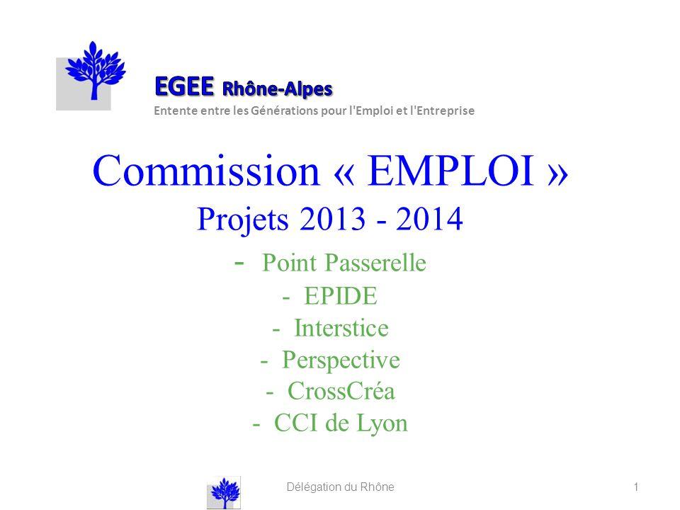 Commission « EMPLOI » Projets 2013 - 2014 - Point Passerelle - EPIDE - Interstice - Perspective - CrossCréa - CCI de Lyon Délégation du Rhône 1