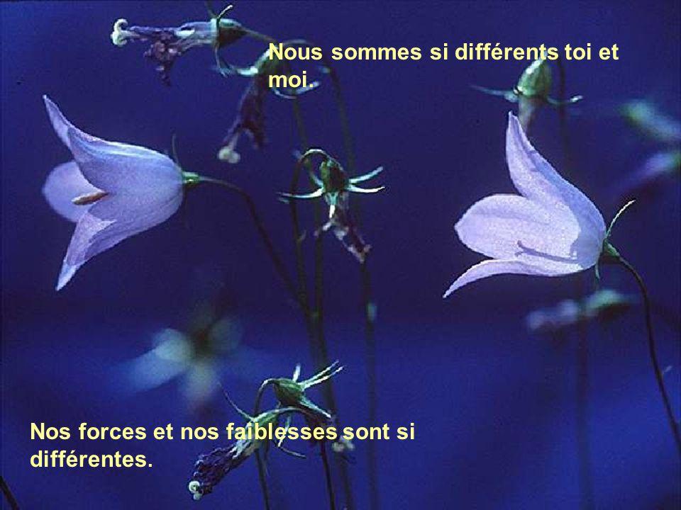 Nous sommes si différents toi et moi. Nos forces et nos faiblesses sont si différentes.