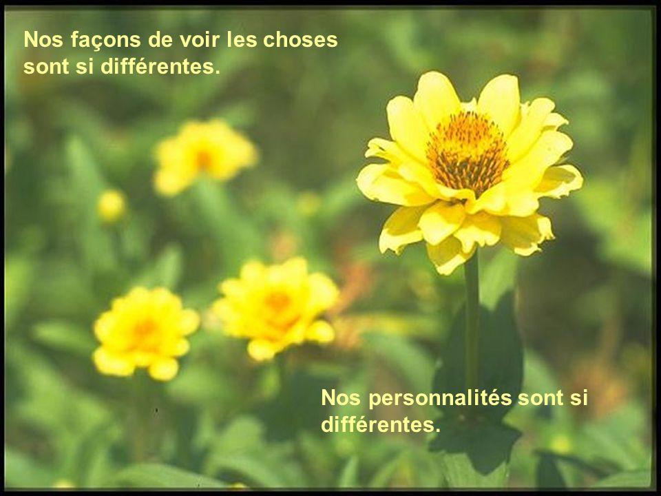 Nos façons de voir les choses sont si différentes. Nos personnalités sont si différentes.