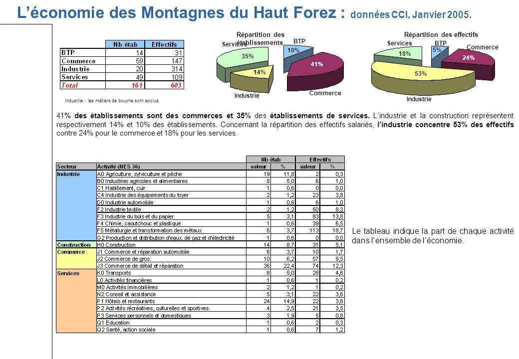 Léconomie des Montagnes du Haut Forez : données CCI, Janvier 2005. Répartition des établissements Répartition des effectifs Industrie : les métiers de