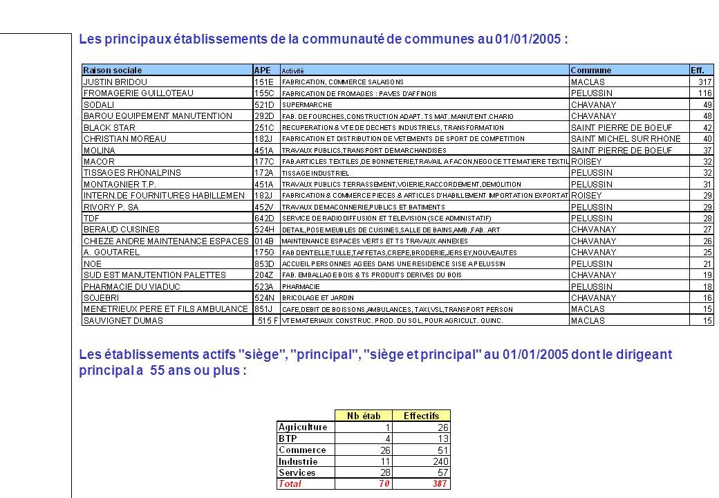 Les principaux établissements de la communauté de communes au 01/01/2005 : Les établissements actifs siège , principal , siège et principal au 01/01/2005 dont le dirigeant principal a 55 ans ou plus :