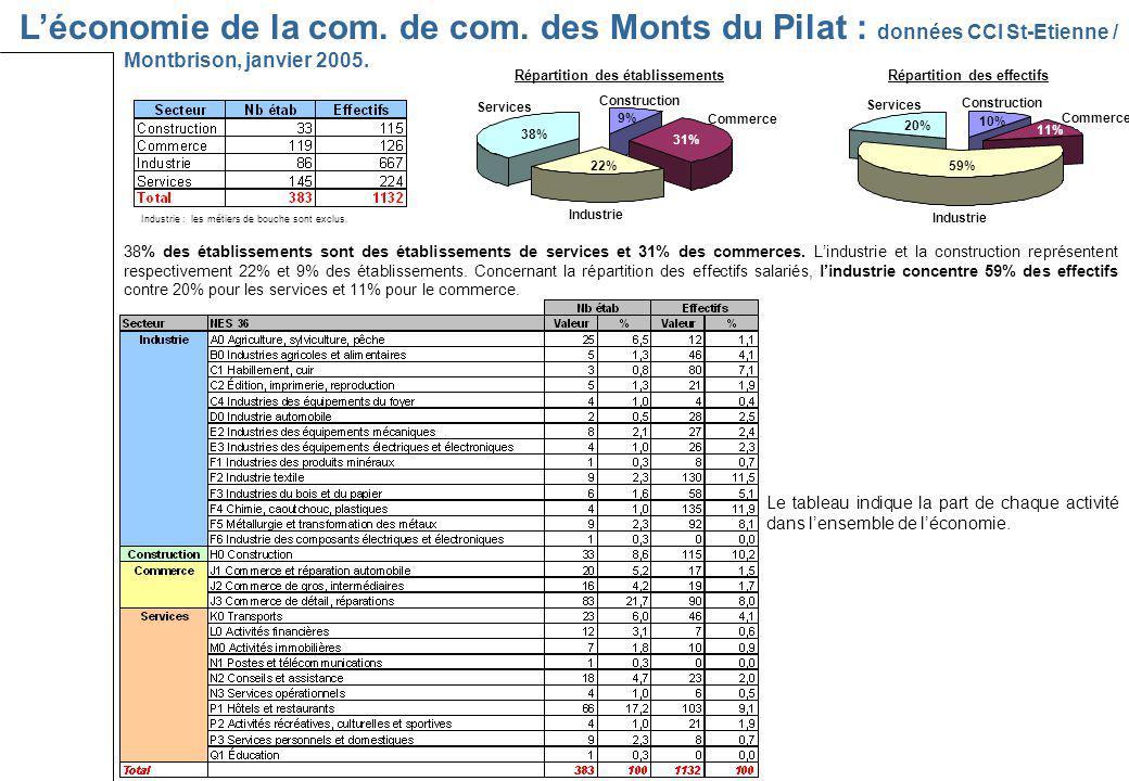 Léconomie de la com. de com. des Monts du Pilat : données CCI St-Etienne / Montbrison, janvier 2005. 38% des établissements sont des établissements de