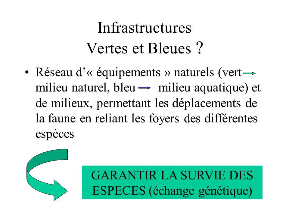 Réseau d« équipements » naturels (vert milieu naturel, bleu milieu aquatique) et de milieux, permettant les déplacements de la faune en reliant les fo